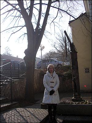 シューベルトが『菩提樹』を作曲したゆかりの木の下で